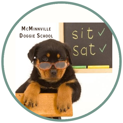 McMinnville Doggie School McMinnville Oregon